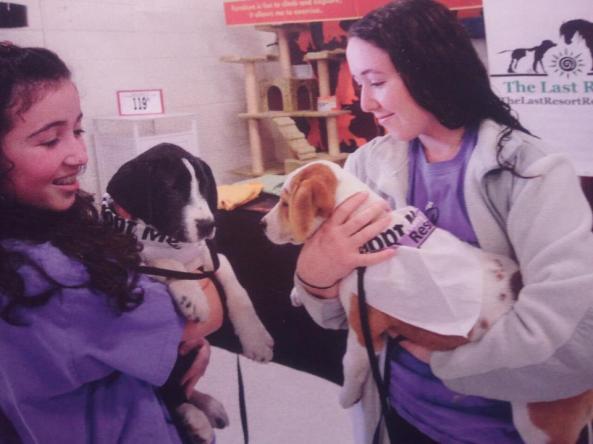 Last Resort pet adoption event in NJ